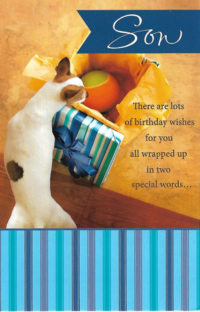 Son Birthday Wishes Wrapped Up In 2 Words Birthday Card For A Son